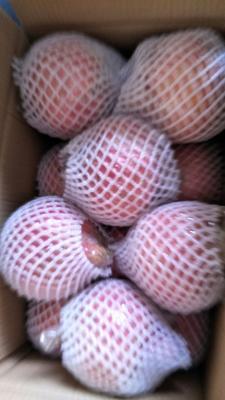 陕西省西安市未央区临潼石榴  1斤 - 2斤 药用,泡酒酸石榴