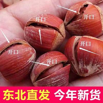 河北省唐山市迁安市榛子  24个月以上 包装 东北榛子烘焙熟开口