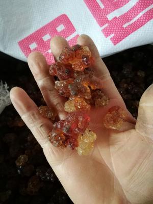 湖南省怀化市芷江侗族自治县食用桃胶 24个月以上