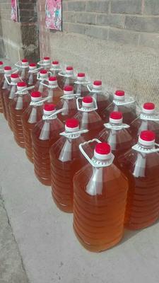 山西省晋城市沁水县自榨纯菜籽油 朋友家种的葵花