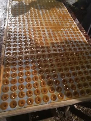云南省昭通市巧家县甘蔗原汁红糖  甘汁原汁红糖