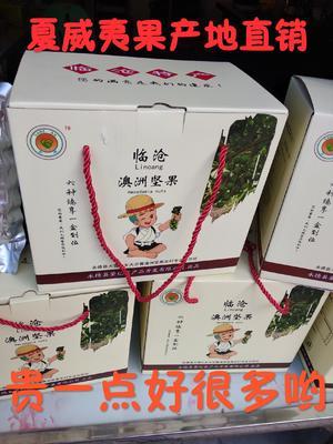 云南省临沧市永德县夏威夷果 12-18个月 包装