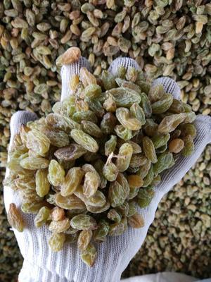 新疆维吾尔自治区吐鲁番地区鄯善县新疆绿葡萄干 二等