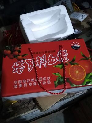 四川省内江市资中县塔罗科血橙 65 - 70mm 4-8两