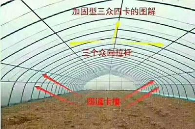 天津静海县种植大棚