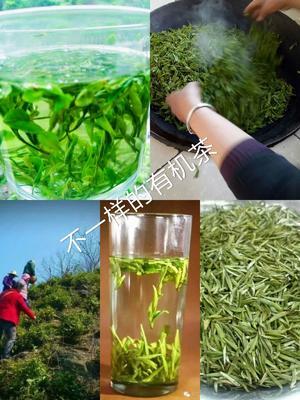 陕西省商洛市镇安县陕南绿茶 特级 罐装