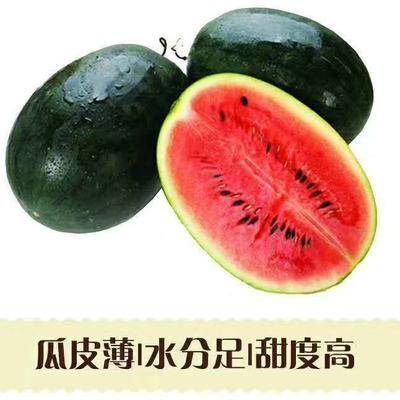 广西壮族自治区南宁市上林县黑美人西瓜  5斤打底 10成熟 有籽 1茬 包邮