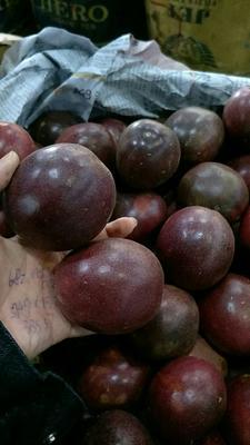 广西壮族自治区崇左市凭祥市紫色百香果  60 - 70克 一级,5-6个一斤