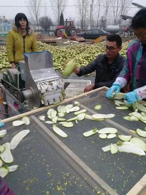 河南省南阳市方城县萝卜干咸菜