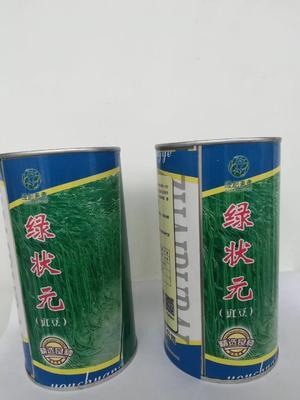 山东省济南市历城区长青豆角种子 ≥90%