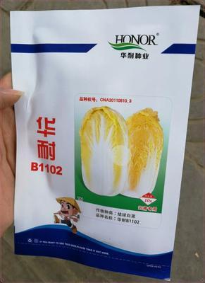 云南省玉溪市通海县华耐B1102娃娃菜 4~5两以上