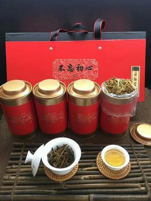 福建省泉州市安溪县滇红金针 特级 罐装