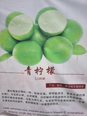 广西壮族自治区崇左市凭祥市越南无籽柠檬 5 - 6两