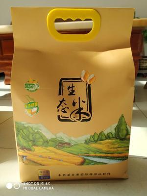 山西省忻州市原平市有机富硒小米