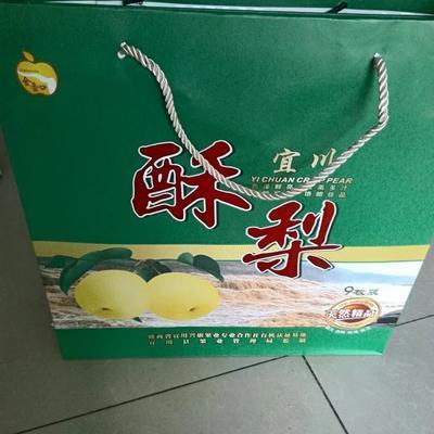 陕西省延安市宜川县壶口酥梨 75mm以上 200-250g