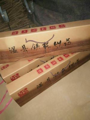 河南省濮阳市清丰县铁棍山药  带盒八斤
