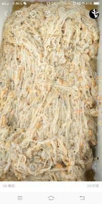 山东省烟台市莱州市海湾扇贝  野生 30-50只/公斤 自己加工的扇贝边批发