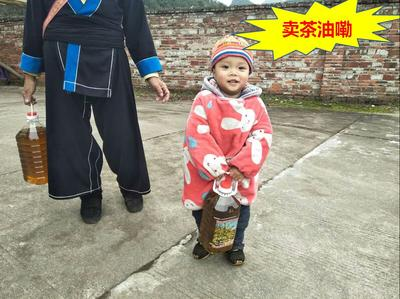 广东省清远市连南瑶族自治县野生山茶油
