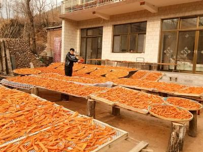 河北省保定市易县红薯干 半年 条状 袋装