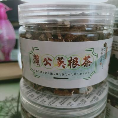 吉林省通化市集安市蒲公英茶  特级 罐装 野生