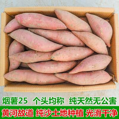 上海浦东新区烟薯25 混装通货 红皮