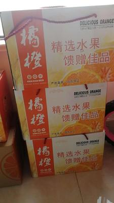 这是一张关于水果礼盒 的产品图片