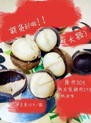 广东省广州市越秀区夏威夷果 (大颗)奶油味