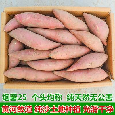 上海浦东新区烟薯25 混装通货 黄皮