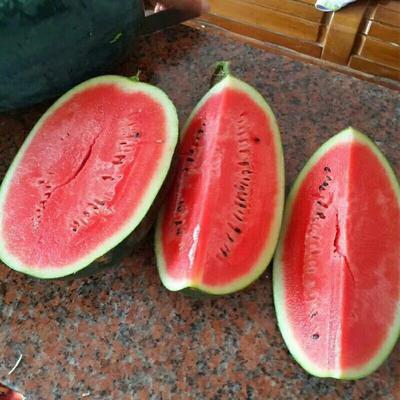广西壮族自治区崇左市凭祥市黑美人西瓜 有籽 1茬 8成熟 4斤打底