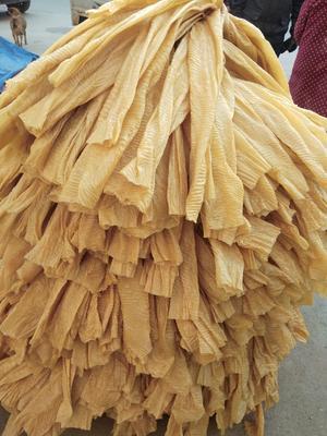 安徽省阜阳市界首市蛋白肉