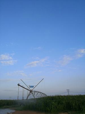 这是一张关于水浇地 出租 5年以下 500~1000亩 的产品图片