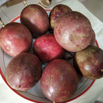 广西壮族自治区玉林市北流市紫色百香果 70 - 80克