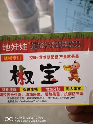 河南省安阳市内黄县植物生长调节剂  粉剂 袋装 低毒 辣椒专业控旺、膨大