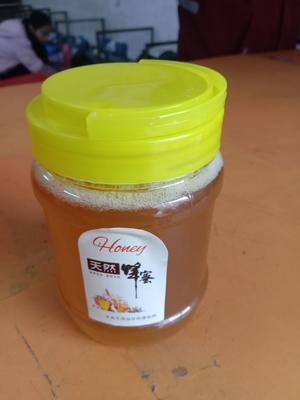 广西壮族自治区玉林市兴业县土蜂蜜 塑料瓶装 2年以上 100%