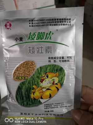 河南省安阳市内黄县植物生长调节剂  粉剂 袋装 低毒 小麦专业控旺50g