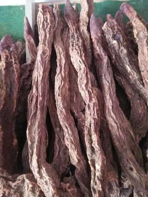 甘肃省酒泉市瓜州县(原安西县)锁阳 散装 块 干燥
