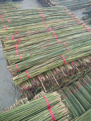这是一张关于菜架竹 的产品图片