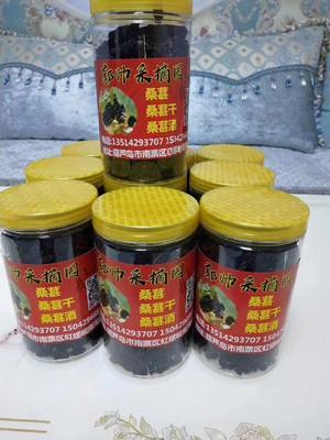 辽宁省葫芦岛市南票区桑甜1号  我卖的是桑葚酒