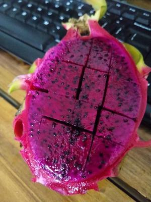 广西壮族自治区崇左市凭祥市红皮红肉火龙果 特大(1斤以上)