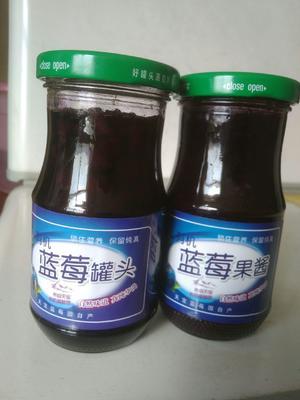 辽宁省大连市金州区蓝莓罐头 12-18个月