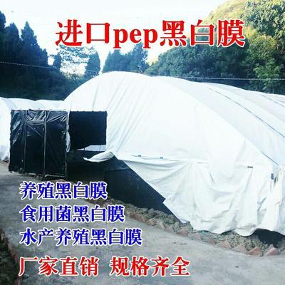 江苏省徐州市新沂市黑白膜  进口膜包用10年