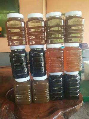 云南省西双版纳傣族自治州景洪市土蜂蜜 塑料瓶装 2年以上 100%