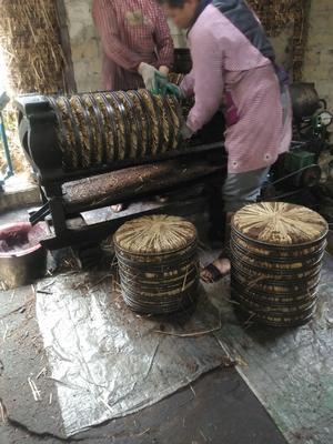广西壮族自治区贺州市八步区现榨山茶油