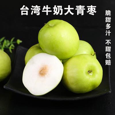 河北省唐山市迁安市台湾青枣  10-20g 直口 台湾牛奶枣