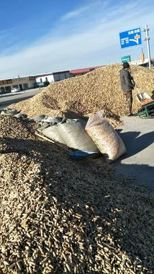 吉林省白城市通榆县四粒红花生 带壳花生 干货