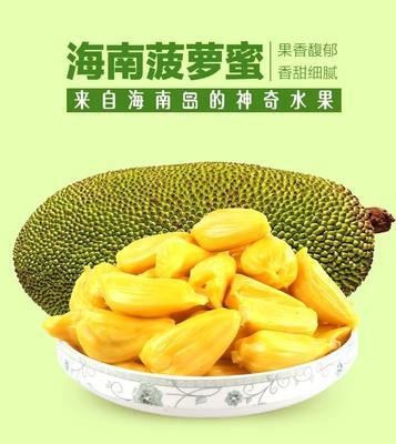 海南省海口市美兰区海南菠萝蜜  15斤以上 单个约22斤