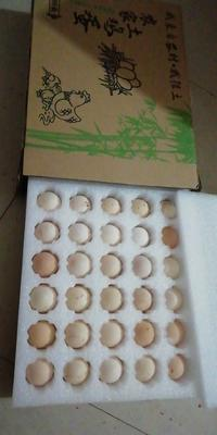 江西省吉安市泰和县白凤乌鸡蛋 食用 礼盒装
