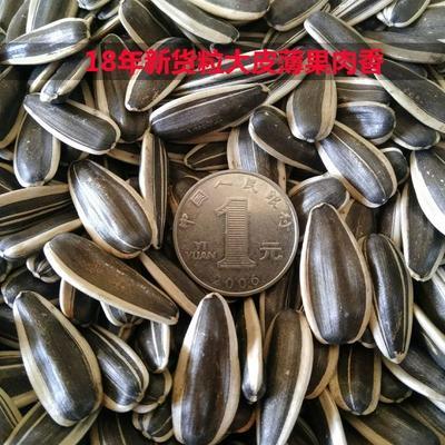 内蒙古自治区呼和浩特市回民区363葵花籽  熟瓜子内蒙古