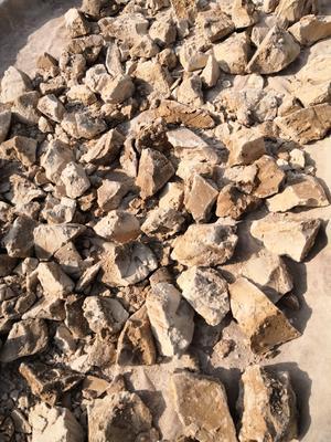 安徽省六安市霍山县橡子淀粉
