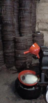 广西壮族自治区柳州市融安县现榨山茶油